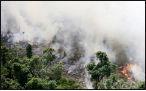 افزایش نگرانیها از آتشسوزی آمازون