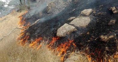 تنها منطقه سالم خائیز آتش گرفت