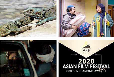 حضور پررنگ سینمای ایران در جشنوارههای جهانی