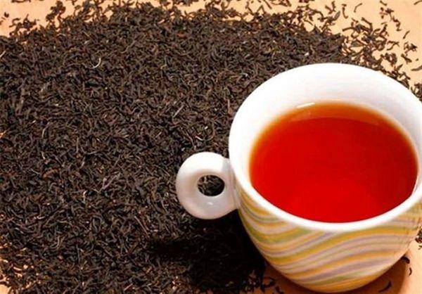 کنیا میخواهد کارخانه تولید چای در ایران راهاندازی کند