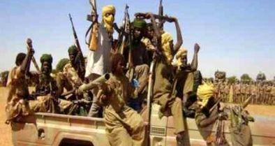 ناکامی شورای امنیت در حل بحران دارفور