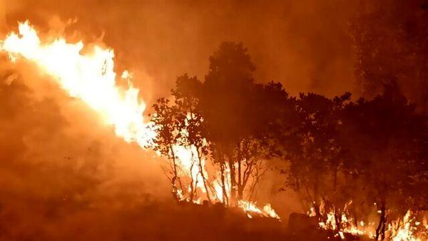 آتش در جنگلهای منطقه دمچنار بویراحمد