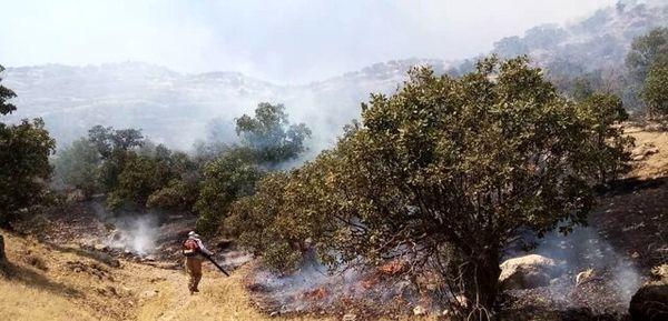 مهار آتشسوزیها در منطقه حفاظت شده دنا