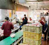 پای شرکت پست به توزیع مرغ باز شد