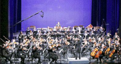 ارکسترها را شورای انتخاب برگزیده است؟