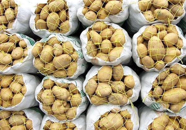 شرایط صادرات سیبزمینی از مرز پرویزخان اعلام شد