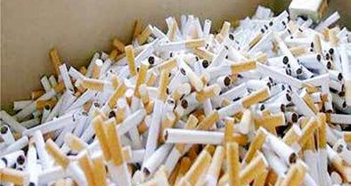 تلفات دخانیات بیشتر از کرونا است