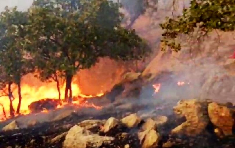 ادامه آتش سوزی در منطقه حفاظت شده «دیل» در گچساران